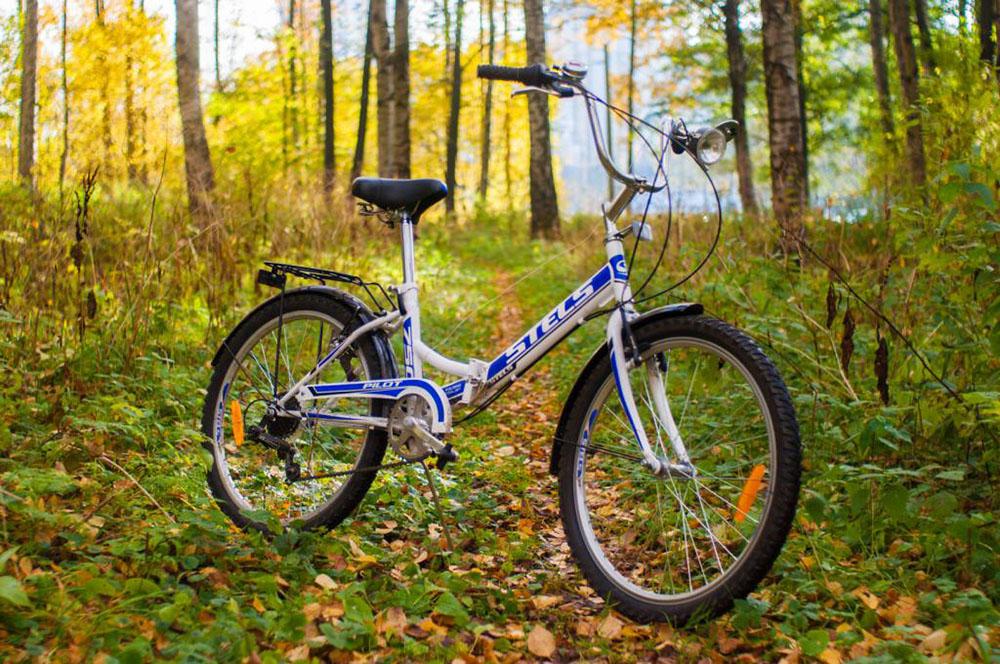 Особенности велосипедов СТЕЛС (STELS)